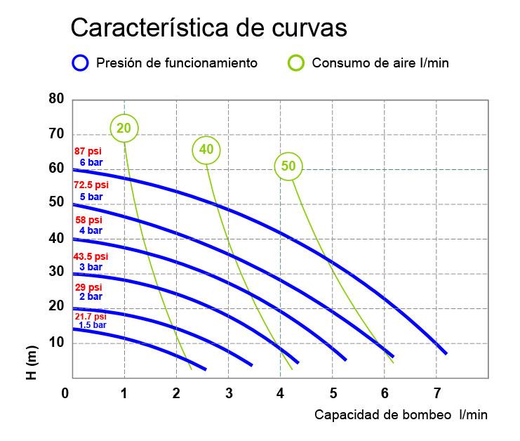 Curve P08 REV 01 ES